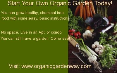 organicgardendelight