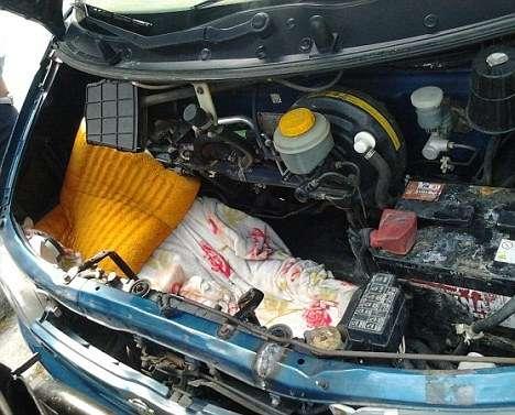 article013161e82000005d - Inmigrante afgano pasó 20 horas escondido bajo el capó de un coche